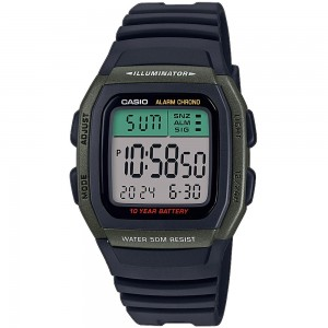 TIMEX TW2P80100